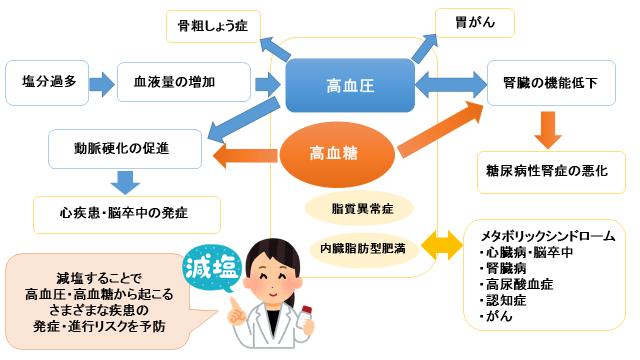 糖尿病と高血圧・減塩の仕組み